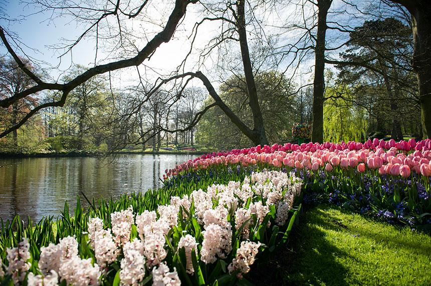 Keukenhof-Garden-Lisse-Netherlands-parks